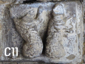 C11-ovejas