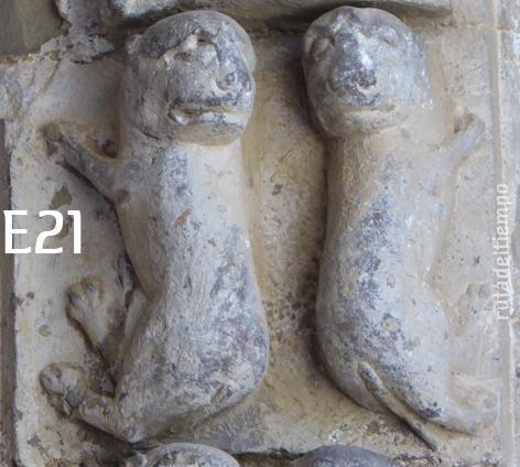 E21-perros